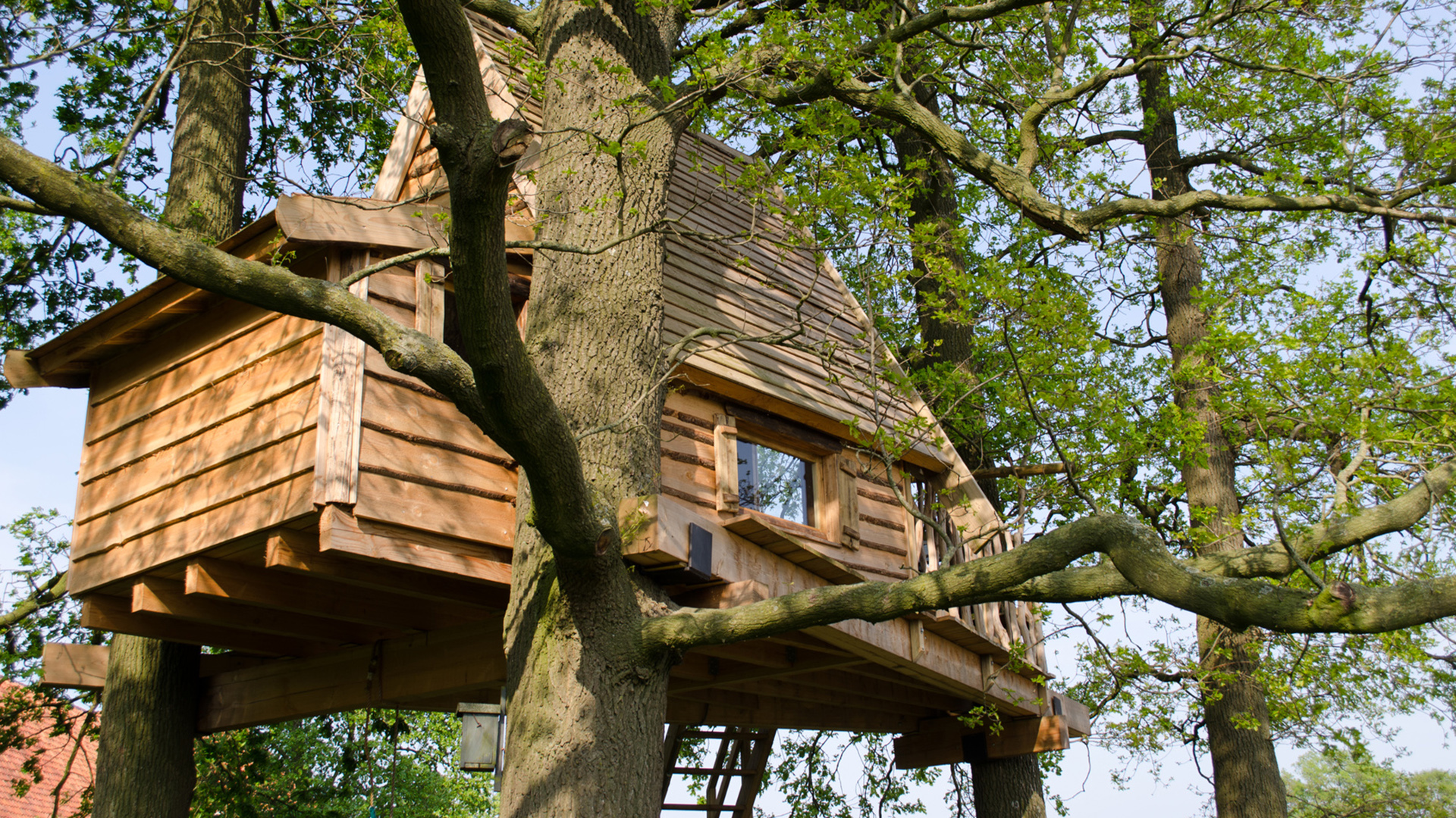cabane r ves constructeur de cabane dans les arbres. Black Bedroom Furniture Sets. Home Design Ideas